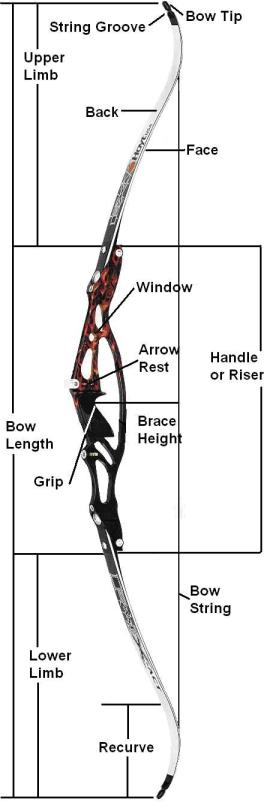 Parts of the Recurve Bow