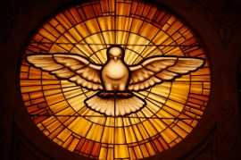 the Bird of Holy Spirit